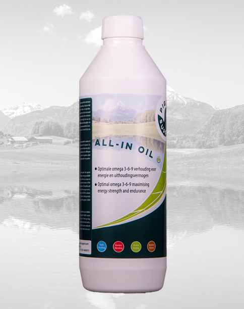 ALL-IN OIL