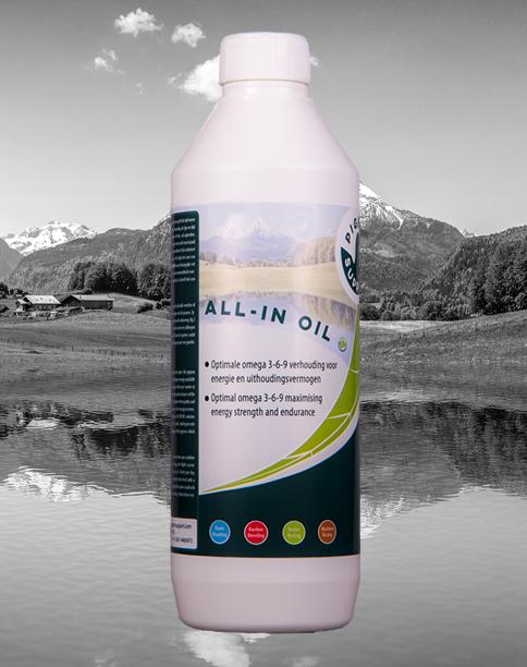 ALL-IN OIL